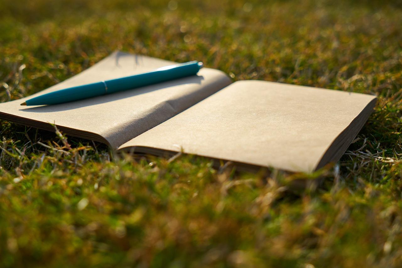 Notebook Pen Is Empty Article  - Engin_Akyurt / Pixabay